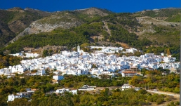 Shite washed village in Andalucia